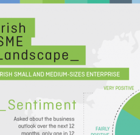 Irish SME Landscape